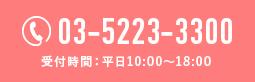 03-5223-3300 受付時間:平日10:00〜18:00